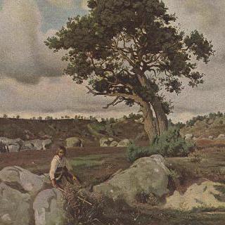 퐁텐블로의 숲 (떡갈나무)