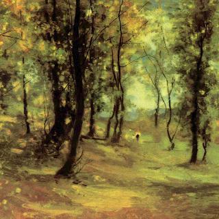 숲 속 빈터