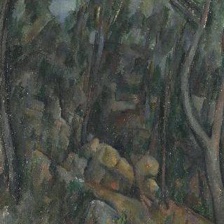 샤토 누아르 위쪽 바위동굴 부근의 숲
