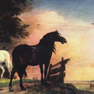 목초지 입구 곁의 말 두 마리