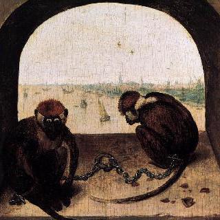원숭이 두 마리