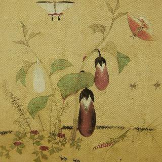 가지와 방아개비