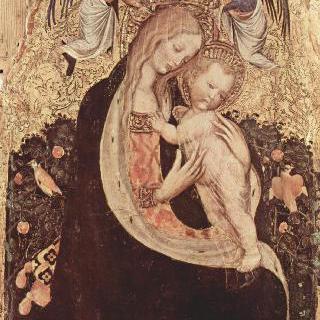 메추라기의 성모 : 성모와 두 천사와 메추라기 이미지