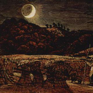 달빛 속의 곡물밭