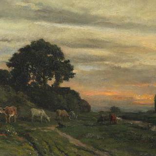 개울가에 가축들이 있는 풍경