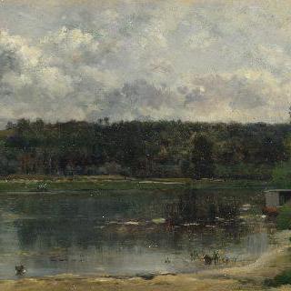 오리들이 있는 강 풍경