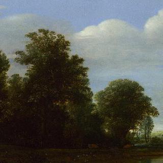 숲 옆으로 강이 흐르는 풍경