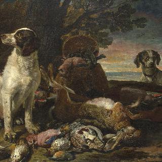 죽은 새와 사냥감 및 사냥개와 작은 올빼미