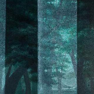 말과 글 - 숲