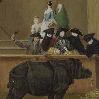 베네치아의 코뿔소 전시회