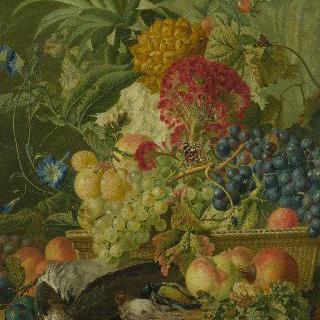 과일과 꽃과 죽은 새