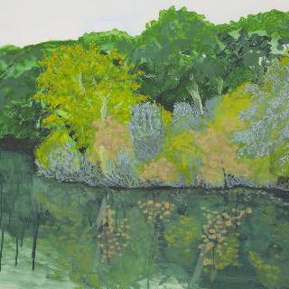 물 위에 나무들