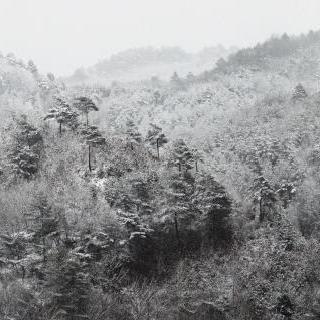 무제 02 No.2030, 홍천