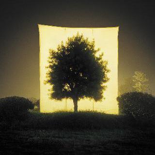 Tree No.11