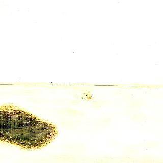 지평선 집 숲