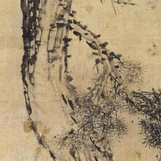 소나무와매