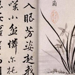 중국기행첩 - 묵란도 란