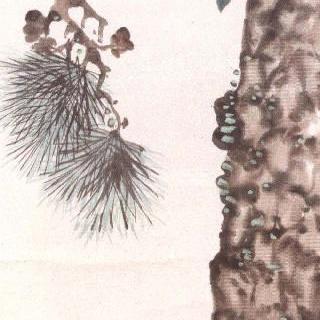소나무에 새