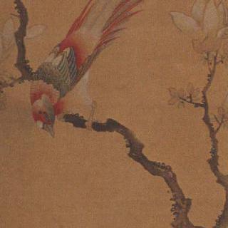 목련과 새