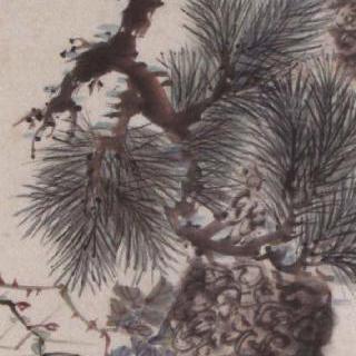 소나무와 장미