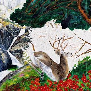 설악산 천불동계곡 오련폭포