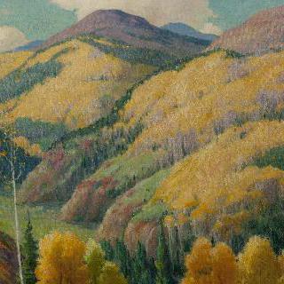 황금빛 백양나무산