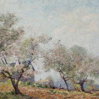 봄날의 농장
