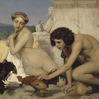 닭싸움을 시키는 젊은 그리스인들