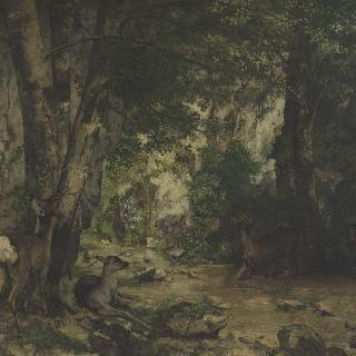 플레지르 연못가 노루들의 은신처