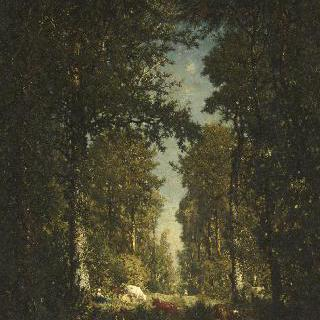 릴 아담, 숲 속의 길