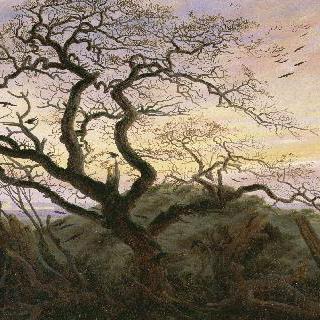 까마귀들이 있는 나무