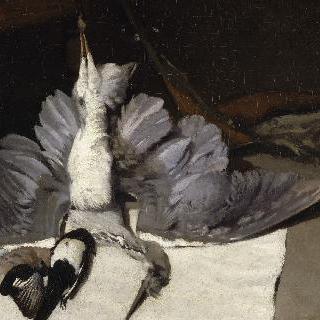 날개를 펼친 채 죽은 왜가리
