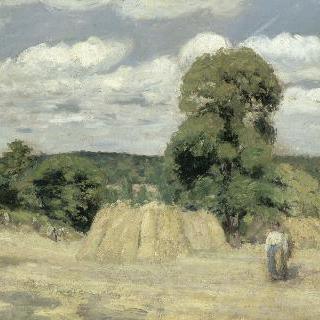 몽푸코의 수확