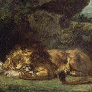 토끼를 잡아먹는 사자
