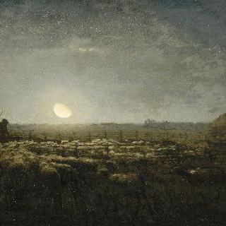 양 떼 목장, 밝은 달빛