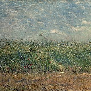 종달새가 있는 밀밭
