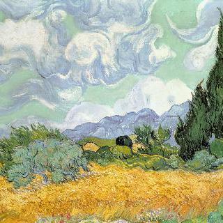 삼나무가 있는 밀밭