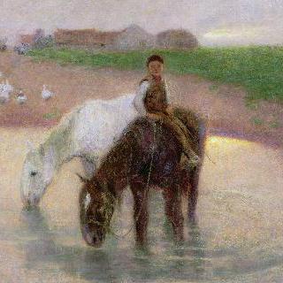 말들의 물 먹이 터