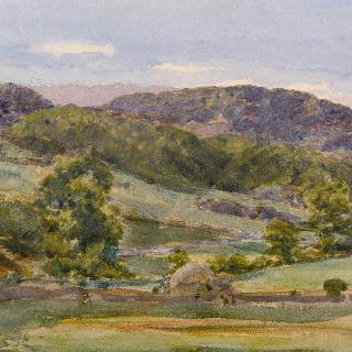 북 웨일스, 모엘 시아보드 근처의 풍경