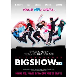 2010 빅뱅라이브콘서트 BIGSHOW 3D