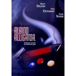 알비노 앨리게이터