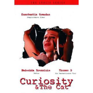 호기심과 고양이