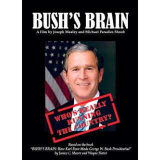 부시의 두뇌