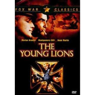 젊은 사자들