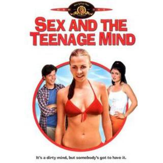 십대들의 섹스스캔들