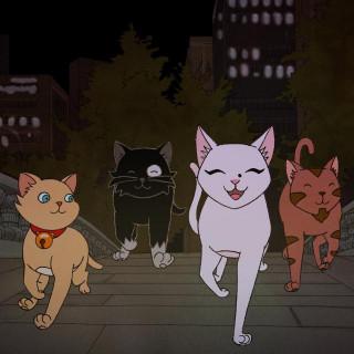 누구나 마음속엔 고양이가 산다