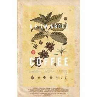 커피에 대한 모든 것