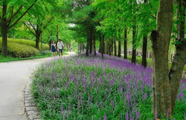 서울 영등포
