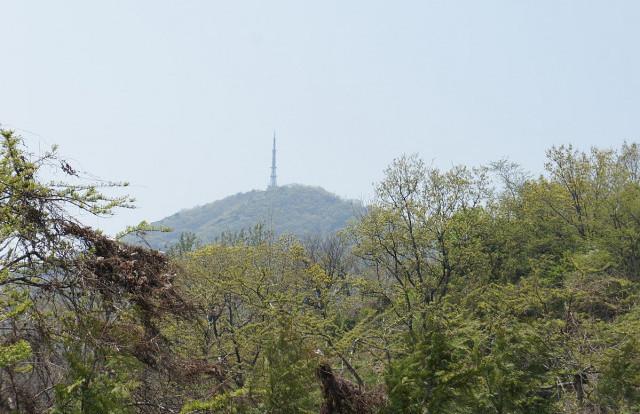 인천 계양