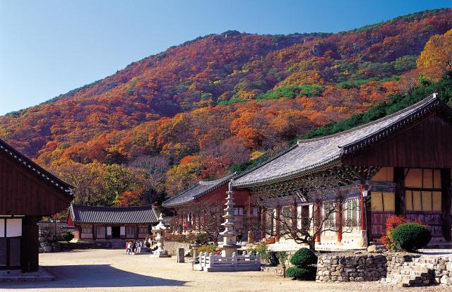 전북 고창